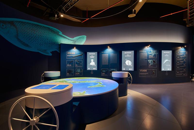Alla scoperta del design delle 5 giostre di FICO mare