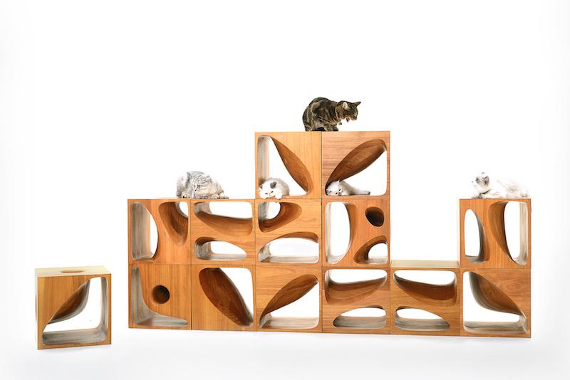 casa a misura di gatto struttura modulare design legno