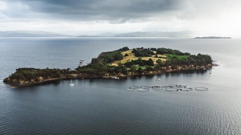 cottage in tasmania satellite island