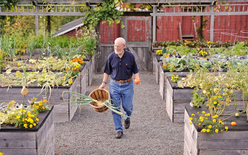 Giardino senza barriere soluzioni innovative e consigli