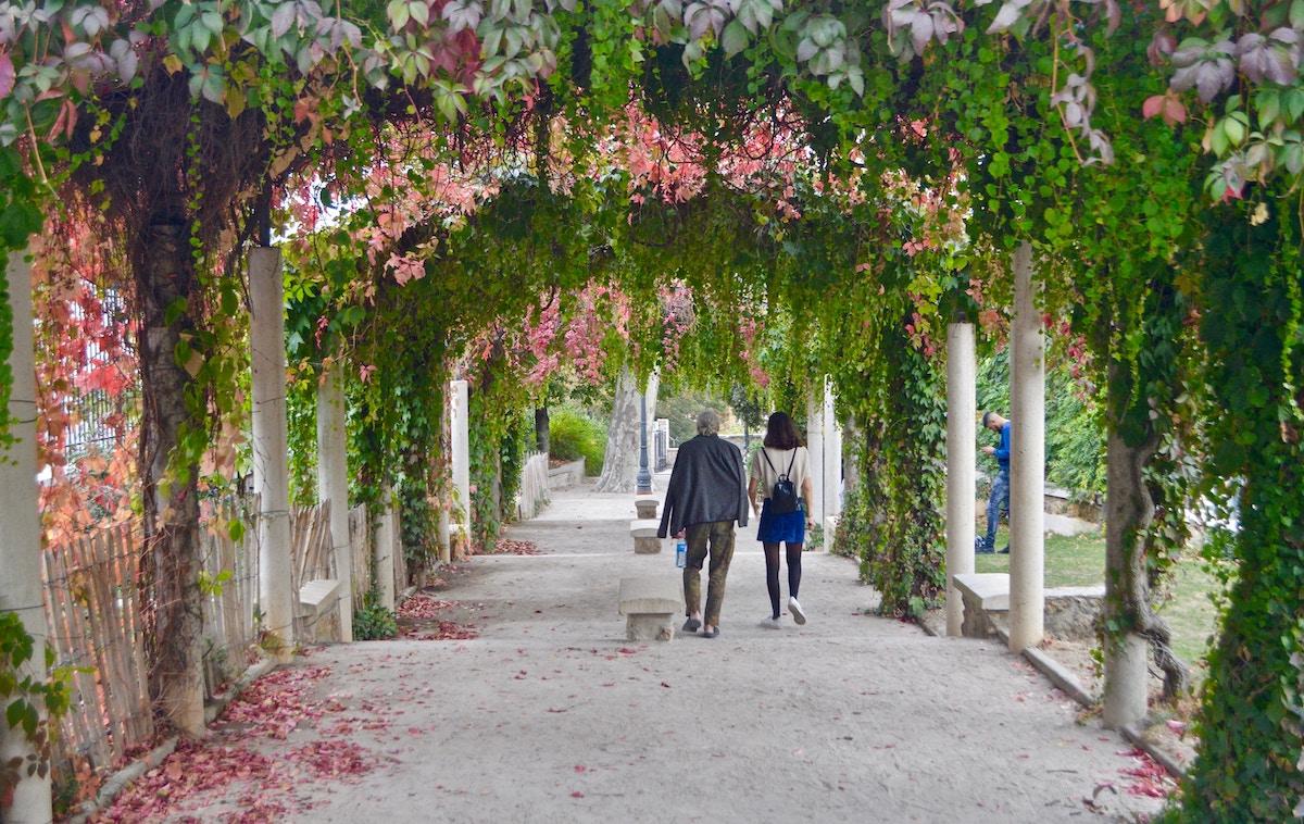 Giardino senza barriere: soluzioni innovative e consigli