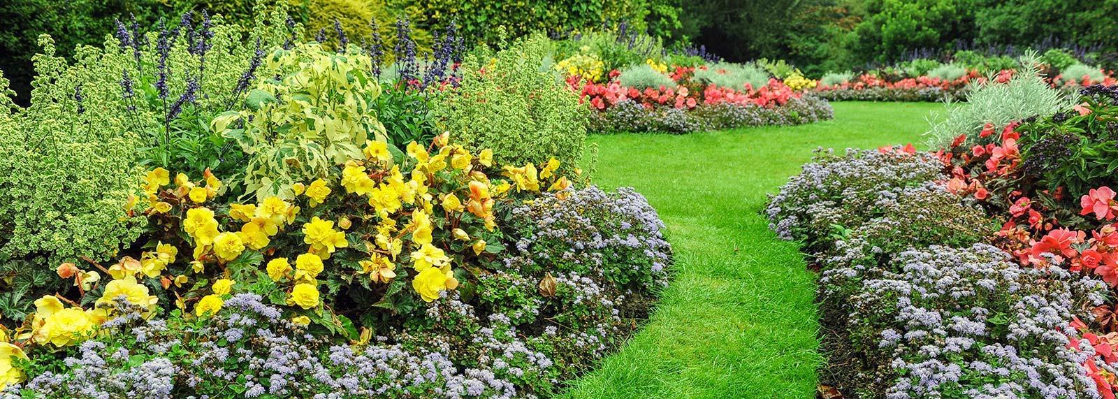 Siepi Miste Da Giardino giardino inglese: come realizzarlo in pochi passi | la gatta