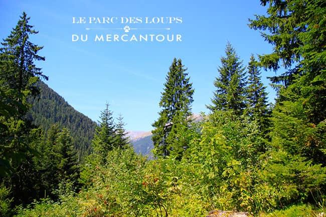 Parco del Mercantour